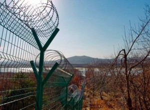 north korean barbed wire